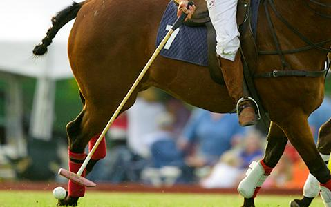 Closeup of Team USA Captain Hitting the Ball During the Newport International Polo Series