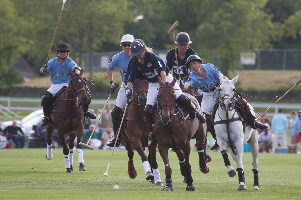 Usa Vs Argentina Newport International Polo Polo Lessons Polo