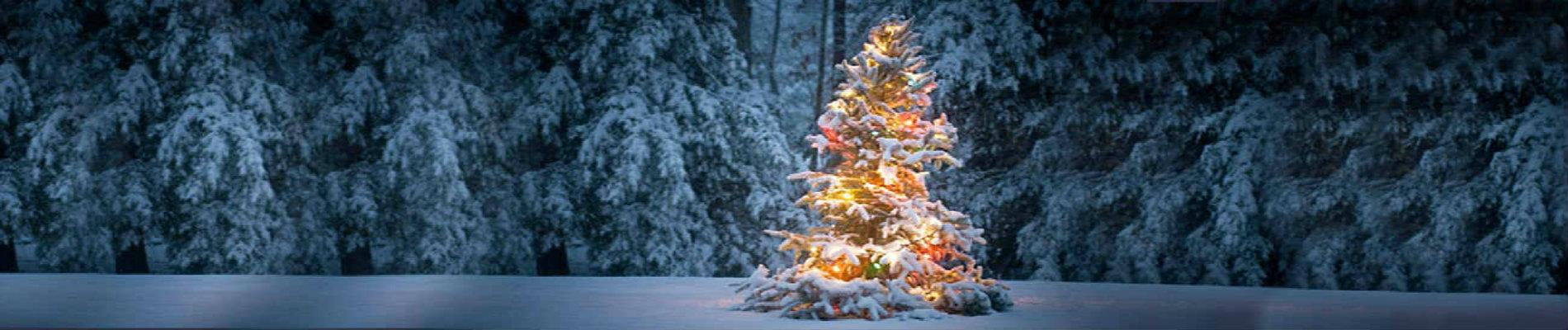Oh Christmas Tree Holiday Getaway - Fernwood Resort a Pocono ...