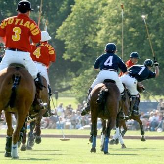 Home - Newport International Polo - Polo Lessons - Polo Grounds