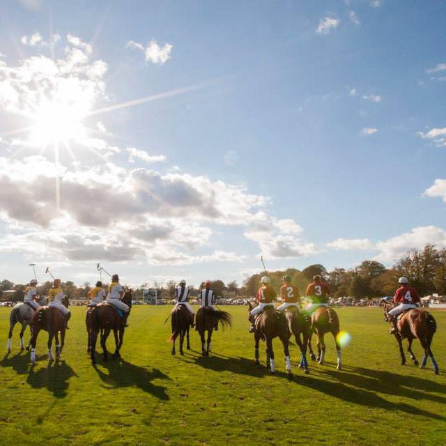 Home - Newport International Polo - Polo Lessons - Polo