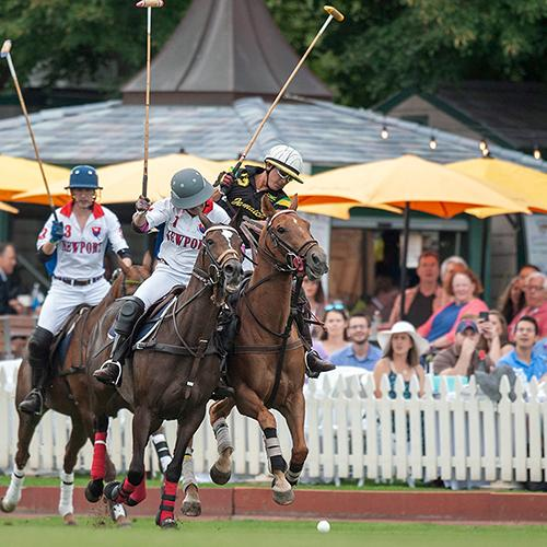 News - Newport International Polo - Polo Lessons - Polo